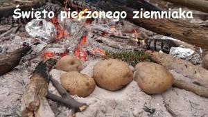 swieto-pieczonego-ziemniaka