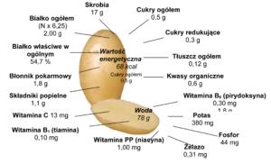walory_ziemniaka